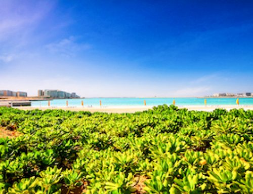 Best Properties in Al Raha Beach